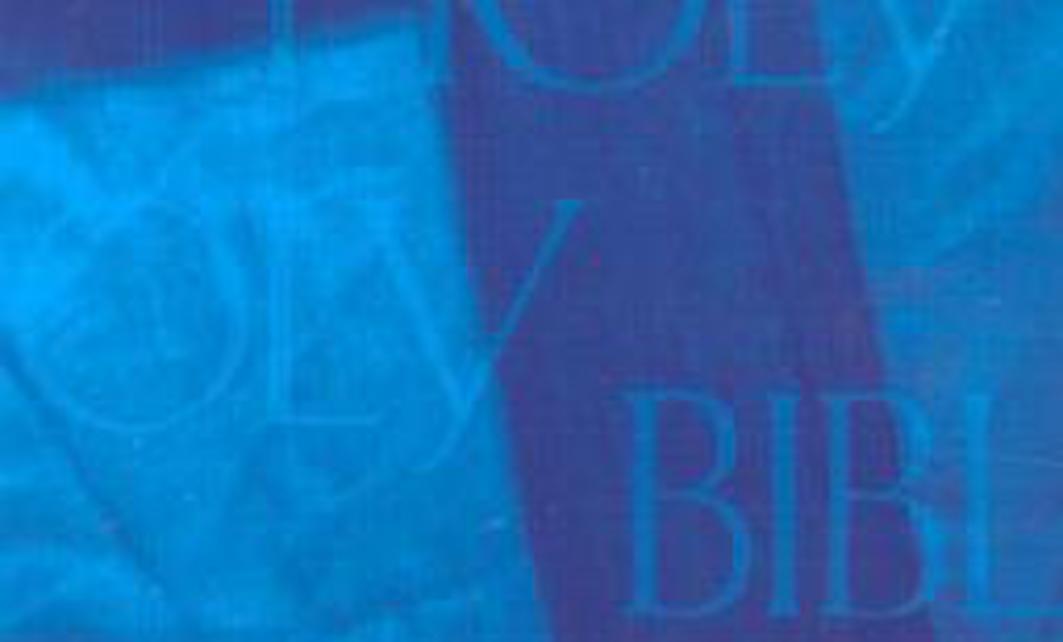 Official Description for the CEV Bible
